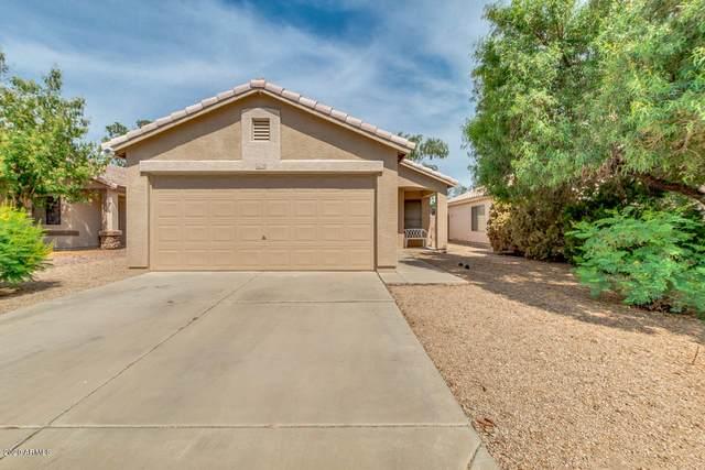 16729 N 157TH Avenue, Surprise, AZ 85374 (MLS #6076627) :: Yost Realty Group at RE/MAX Casa Grande