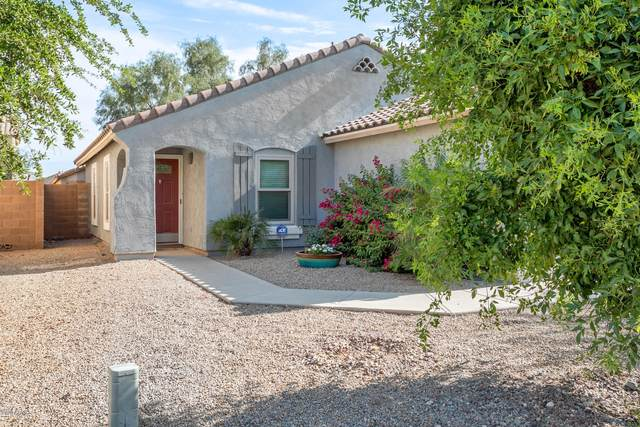 1606 E Maddison Circle, San Tan Valley, AZ 85140 (MLS #6076799) :: My Home Group