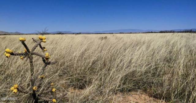 .83 Acre On Spruce Road, Pearce, AZ 85625 (MLS #6076814) :: Service First Realty
