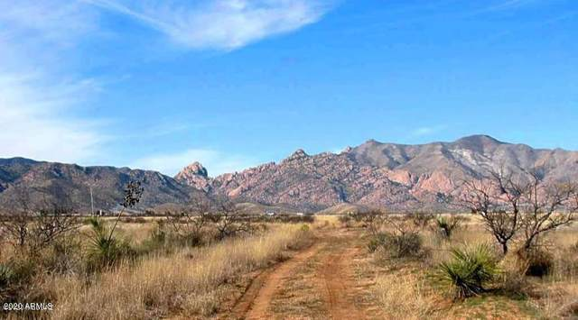 .83 Acre On Juston & Sherwood Street, Pearce, AZ 85625 (MLS #6076828) :: Nate Martinez Team