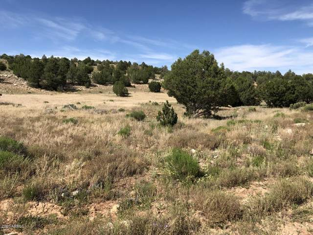 8143 W Red Bluff Road, Williams, AZ 86046 (MLS #6076975) :: Howe Realty