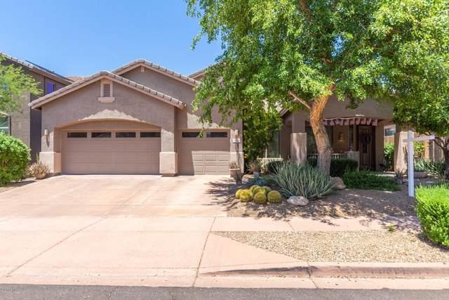 3222 W Donatello Drive, Phoenix, AZ 85086 (MLS #6076990) :: Conway Real Estate