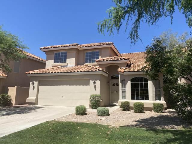 6640 E Snowdon Circle, Mesa, AZ 85215 (MLS #6077018) :: Keller Williams Realty Phoenix