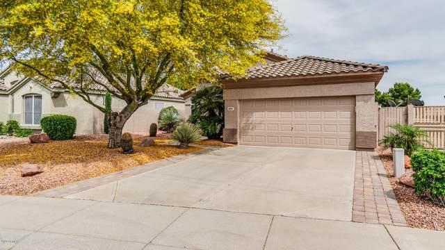 6101 W Irma Lane, Glendale, AZ 85308 (MLS #6077051) :: Keller Williams Realty Phoenix
