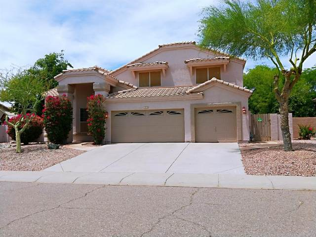 660 W Muirwood Drive, Phoenix, AZ 85045 (MLS #6077338) :: The Laughton Team