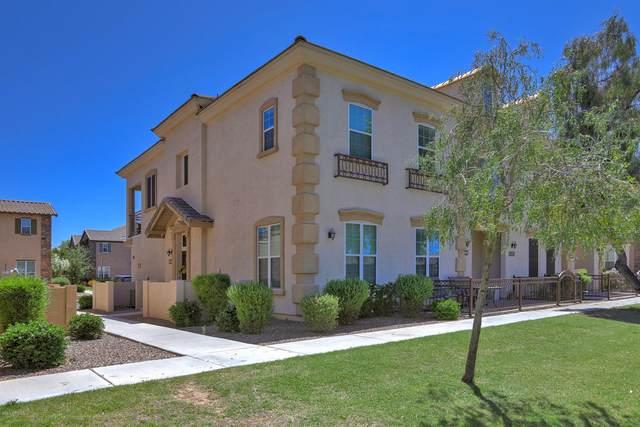 3694 S Winter Lane #101, Gilbert, AZ 85297 (MLS #6077381) :: Klaus Team Real Estate Solutions
