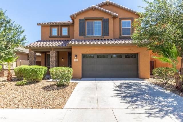2953 E Nighthawk Way, Phoenix, AZ 85048 (MLS #6077427) :: Revelation Real Estate