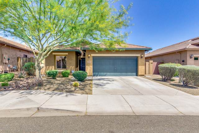27519 N 19TH Drive, Phoenix, AZ 85085 (MLS #6077431) :: The Laughton Team