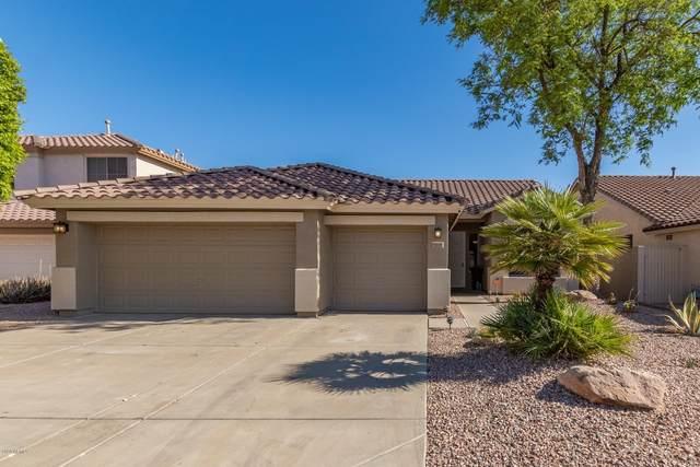 5169 W Angela Drive, Glendale, AZ 85308 (MLS #6077562) :: Keller Williams Realty Phoenix