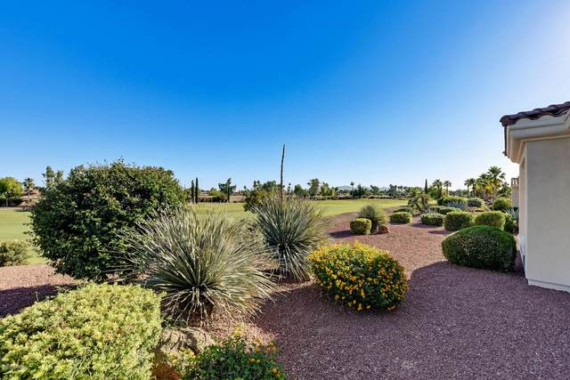 13121 W Santa Ynez Court, Sun City West, AZ 85375 (MLS #6077570) :: Long Realty West Valley