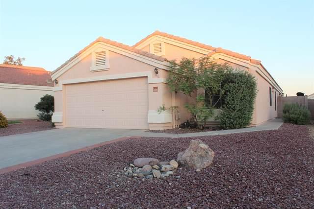11313 W Eden Mckenzie Drive, Surprise, AZ 85378 (MLS #6077650) :: Homehelper Consultants