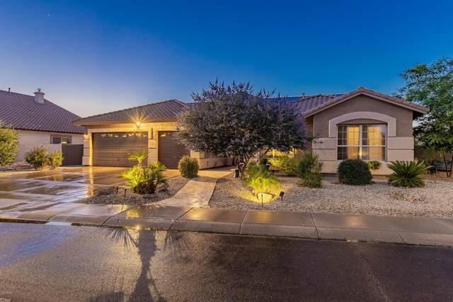5310 W Mohawk Lane, Glendale, AZ 85308 (MLS #6077680) :: Keller Williams Realty Phoenix