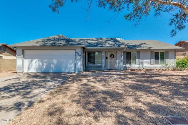 4950 E Enrose Street, Mesa, AZ 85205 (MLS #6077743) :: My Home Group