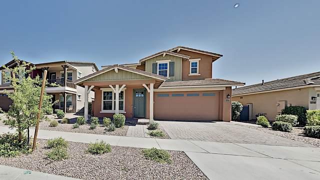 10609 E Sebring Avenue, Mesa, AZ 85212 (MLS #6077781) :: The Bill and Cindy Flowers Team