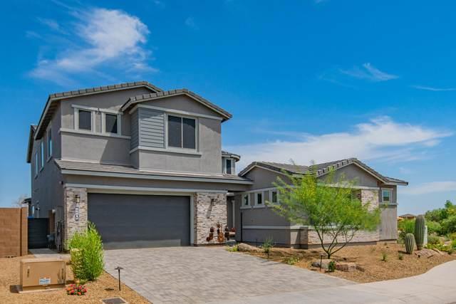 22105 N 31ST Street, Phoenix, AZ 85050 (MLS #6077990) :: Lucido Agency