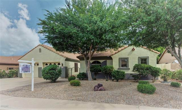 5434 E Grove Avenue, Mesa, AZ 85206 (MLS #6078015) :: The Property Partners at eXp Realty