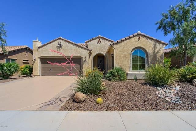 27072 W Sequoia Drive, Buckeye, AZ 85396 (MLS #6078164) :: Long Realty West Valley