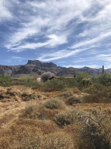 6250 E 10TH Avenue, Apache Junction, AZ 85119 (MLS #6078178) :: The W Group