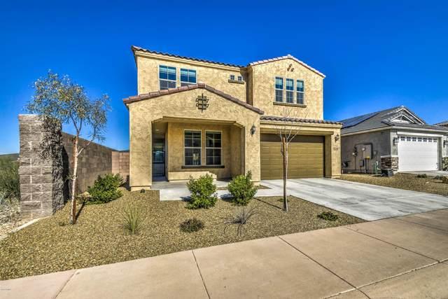 534 E Pasaro Drive, Phoenix, AZ 85085 (MLS #6078216) :: The W Group
