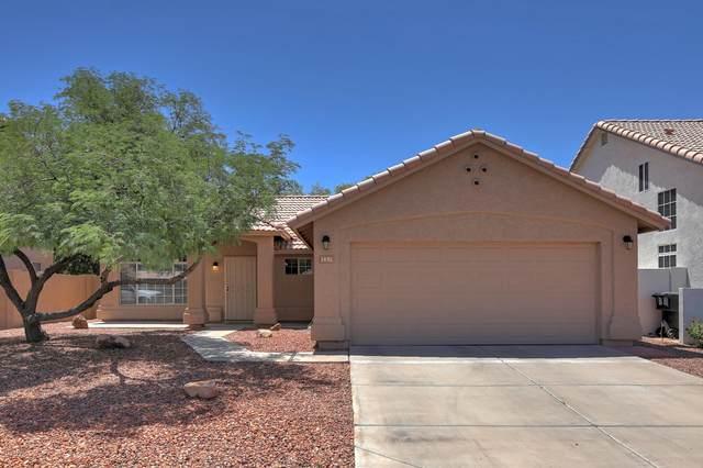 1451 W Gary Drive, Chandler, AZ 85224 (MLS #6078301) :: Klaus Team Real Estate Solutions