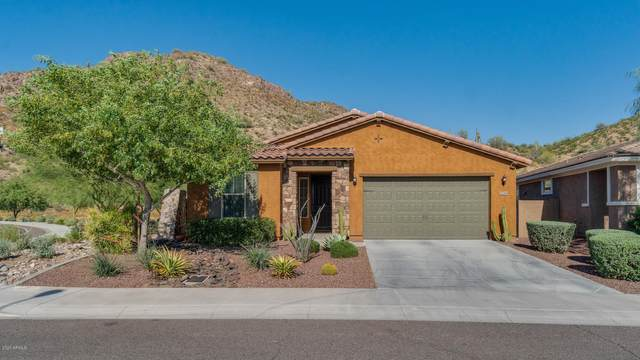 27289 N Skipping Rock Road, Peoria, AZ 85383 (MLS #6078324) :: neXGen Real Estate