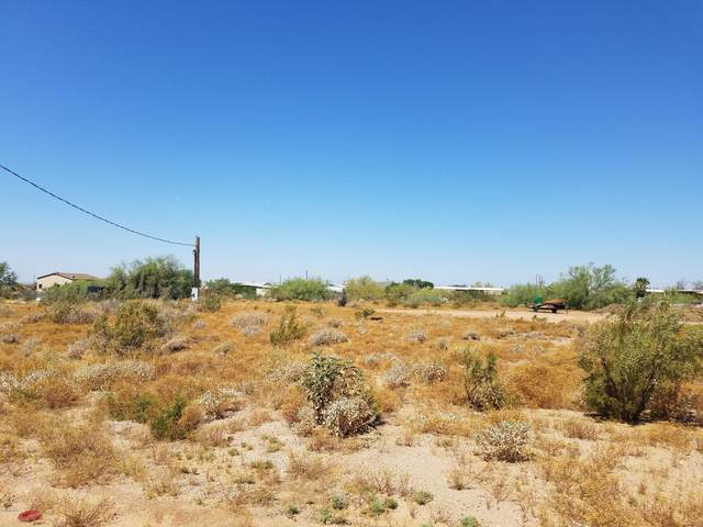 4228 N Saguaro Drive, Apache Junction, AZ 85120 (MLS #6078358) :: Lux Home Group at  Keller Williams Realty Phoenix