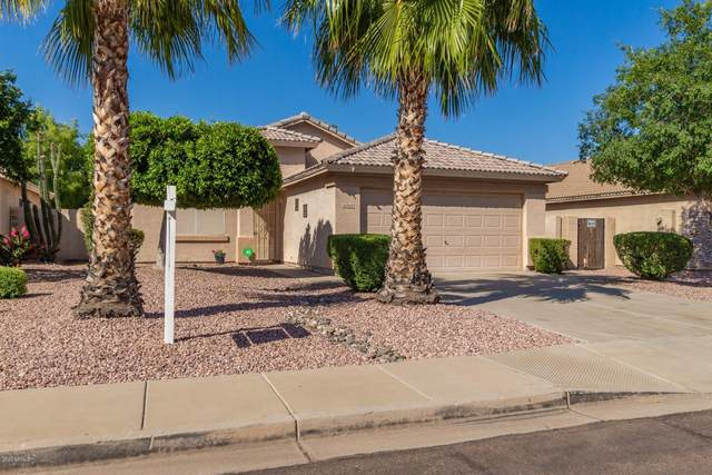 15328 W Port Royale Lane, Surprise, AZ 85379 (MLS #6078425) :: NextView Home Professionals, Brokered by eXp Realty