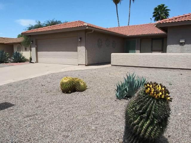 26417 S Truro Drive, Sun Lakes, AZ 85248 (MLS #6078442) :: The Carin Nguyen Team