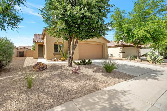40164 W Bonneau Street, Maricopa, AZ 85138 (MLS #6078471) :: The Property Partners at eXp Realty