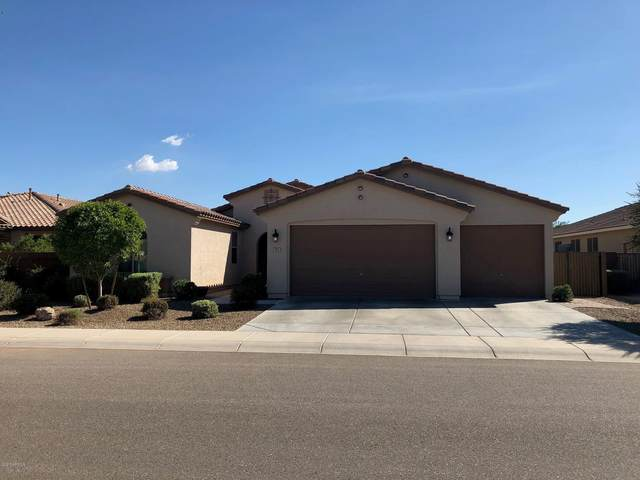 801 W Leatherwood Avenue, San Tan Valley, AZ 85140 (MLS #6078527) :: The Property Partners at eXp Realty