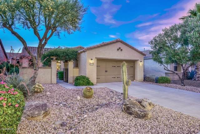 12710 W Jasmine Trail, Peoria, AZ 85383 (MLS #6078544) :: Dijkstra & Co.