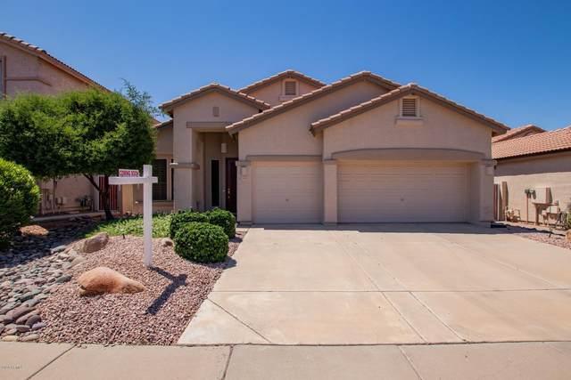 4245 E Molly Lane, Cave Creek, AZ 85331 (MLS #6078665) :: Riddle Realty Group - Keller Williams Arizona Realty