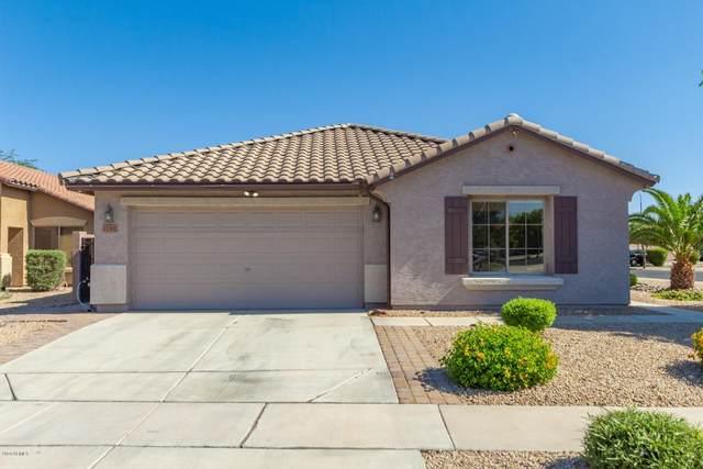 11302 W Hadley Street, Avondale, AZ 85323 (MLS #6078796) :: The Daniel Montez Real Estate Group