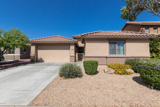 39608 N Graham Way, Phoenix, AZ 85086 (MLS #6078843) :: Revelation Real Estate