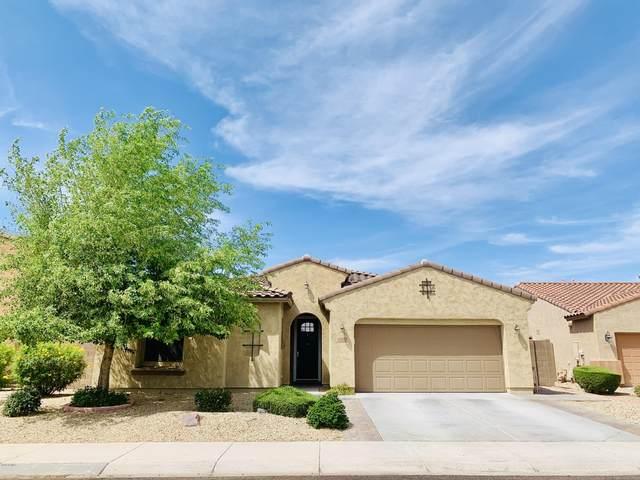 7810 W Adam Avenue, Peoria, AZ 85382 (MLS #6078851) :: Klaus Team Real Estate Solutions