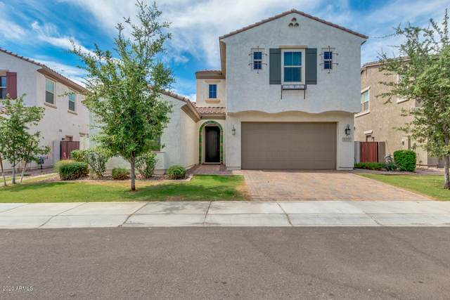 923 W Yellowstone Way, Chandler, AZ 85248 (MLS #6078860) :: Lifestyle Partners Team