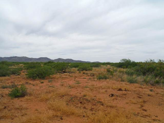TBD W Davis Road, McNeal, AZ 85617 (MLS #6078863) :: neXGen Real Estate