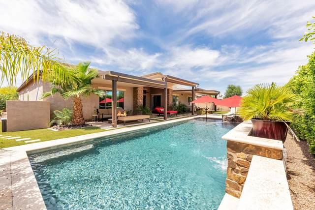 2489 S Velvendo Drive, Gilbert, AZ 85295 (MLS #6078961) :: Yost Realty Group at RE/MAX Casa Grande