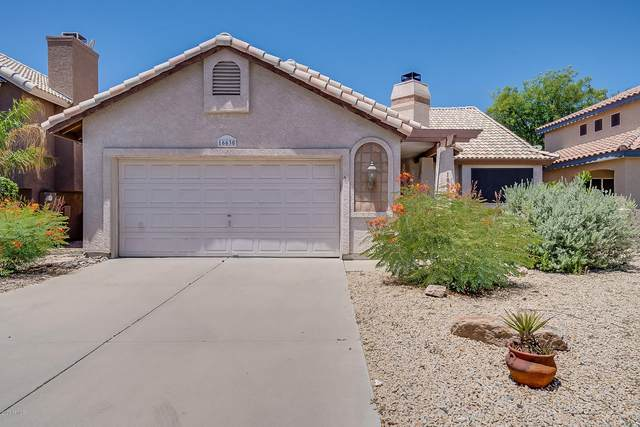 16630 S 28th Place, Phoenix, AZ 85048 (MLS #6078968) :: Revelation Real Estate