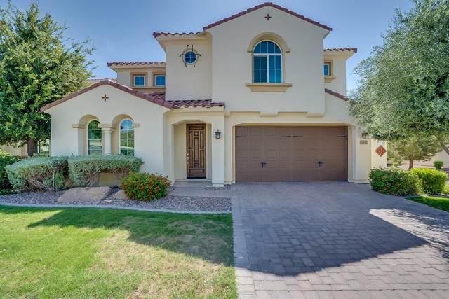 3388 S Ivy Way, Chandler, AZ 85248 (MLS #6079047) :: Revelation Real Estate