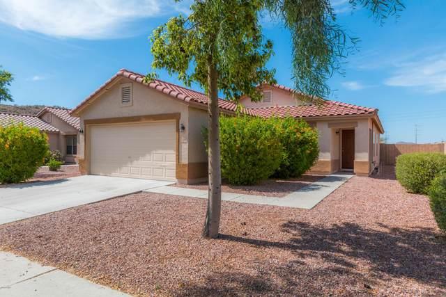 3108 W Mark Lane, Phoenix, AZ 85083 (MLS #6079088) :: Devor Real Estate Associates