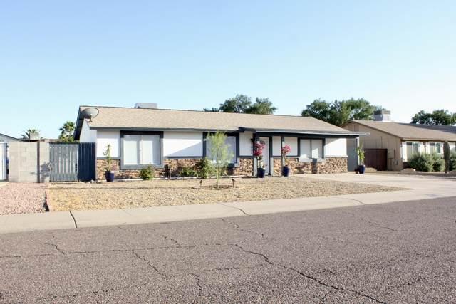 1001 W Tonopah Drive, Phoenix, AZ 85027 (MLS #6079115) :: The W Group