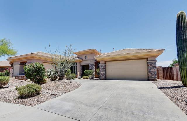 41909 N Club Pointe Drive, Phoenix, AZ 85086 (MLS #6079146) :: Revelation Real Estate