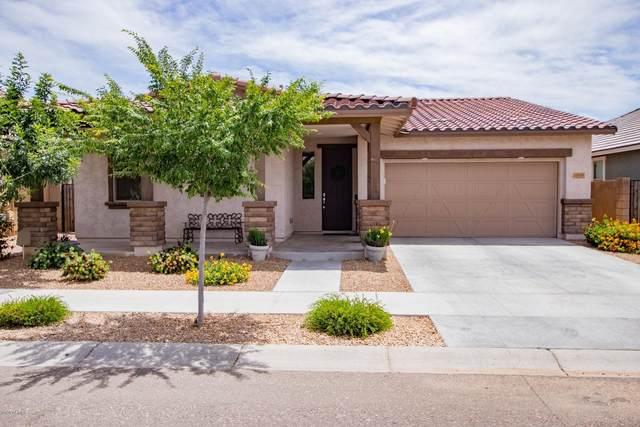22465 E Via Del Verde, Queen Creek, AZ 85142 (MLS #6079167) :: REMAX Professionals