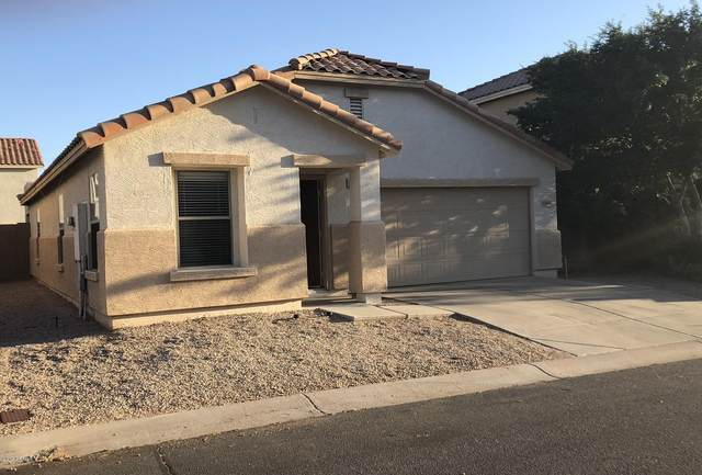 8909 E Plata Avenue, Mesa, AZ 85212 (MLS #6079211) :: neXGen Real Estate
