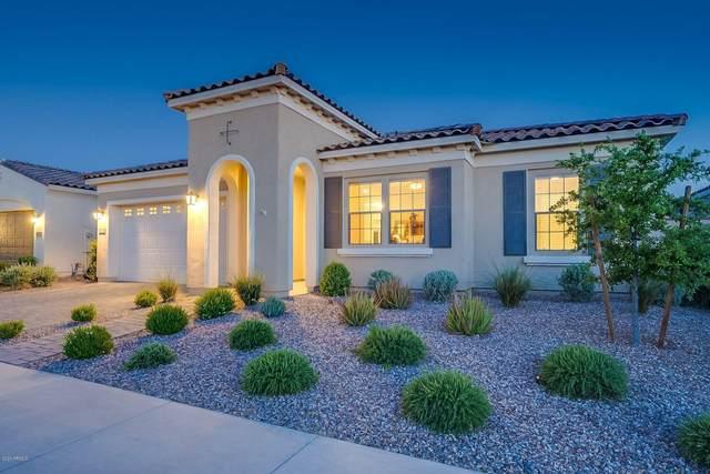 10725 E Simone Avenue, Mesa, AZ 85212 (MLS #6079219) :: Lucido Agency