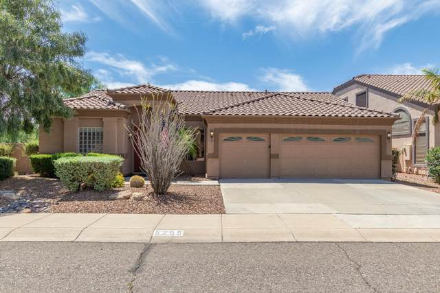 5255 W Angela Drive, Glendale, AZ 85308 (MLS #6079228) :: Kepple Real Estate Group