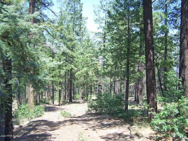 Lot 47 Copper Mountain Circle, Alpine, AZ 85920 (MLS #6079229) :: Kepple Real Estate Group