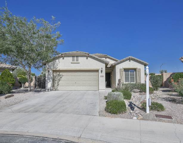5015 S Grenoble, Mesa, AZ 85212 (MLS #6079234) :: Klaus Team Real Estate Solutions