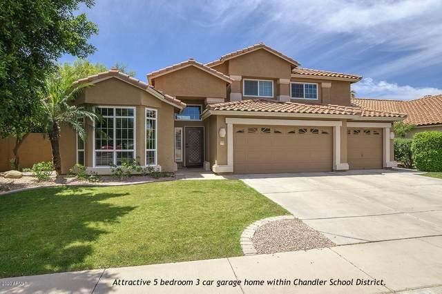 1751 W Monterey Street, Chandler, AZ 85224 (MLS #6079237) :: Klaus Team Real Estate Solutions